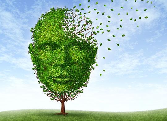 Alzheimer'ı Önlemenin 10 Yolu