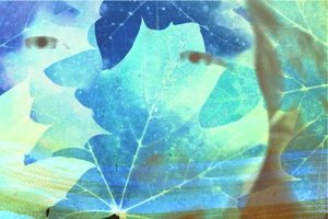 Hezeyanlar Hangi Ruhsal Rahatsızlıklarda Görülür?
