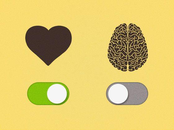 , Hayatına Kalbin mi Ellerin mi Yoksa Beynin mi Yön Veriyor?